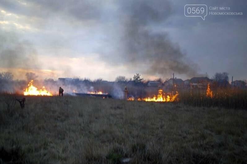 В Піщанській ОТГ вигоріло майже 5 гектарів сухостою: вогонь знищив і господарську споруду, фото-3