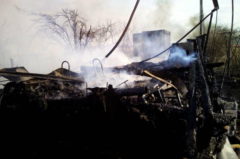 В Піщанській ОТГ вигоріло майже 5 гектарів сухостою: вогонь знищив і господарську споруду, фото-4