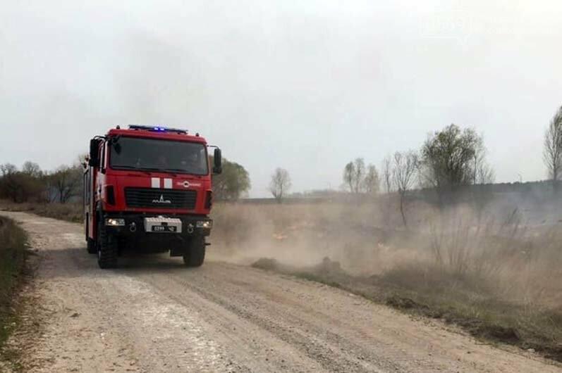 На Дніпропетровщині палають екосистеми: гине безліч мілких тварин і птахів, фото-2