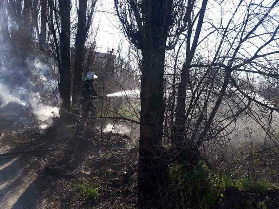 Новомосковські рятувальники ліквідували пожежу в екосистемі, фото-1