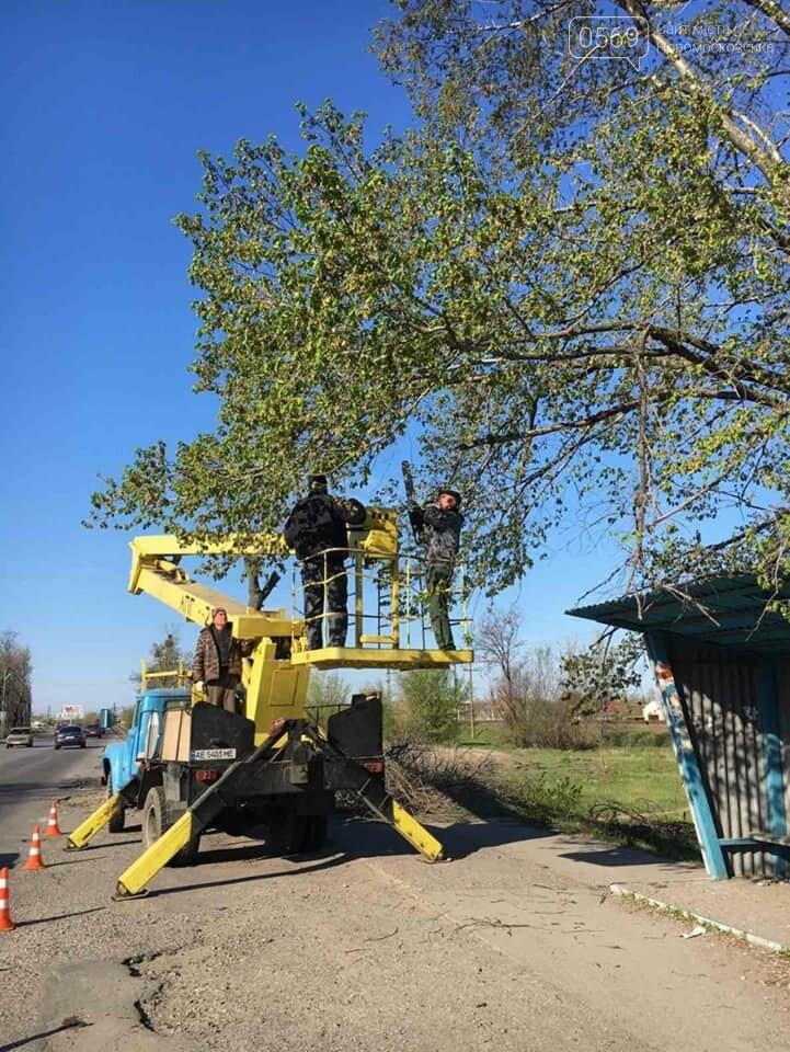 У Новомосковську тривають роботи з благоустрою міста, озеленення та ремонтів, фото-18