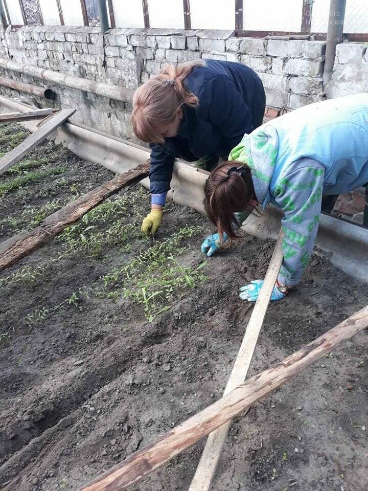 У Новомосковську тривають роботи з благоустрою міста, озеленення та ремонтів, фото-2