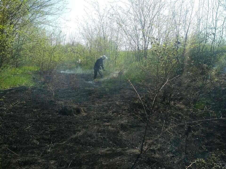 Поблизу Піщанки Новомосковського району вогонь знищив близько 2 га сухої трави та чагарнику, фото-2