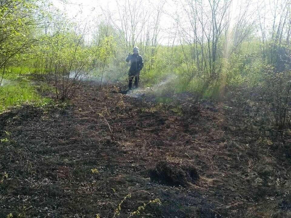 Поблизу Піщанки Новомосковського району вогонь знищив близько 2 га сухої трави та чагарнику, фото-1