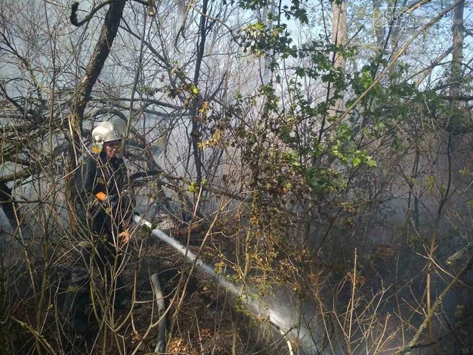 Поблизу Піщанки Новомосковського району вогонь знищив близько 2 га сухої трави та чагарнику, фото-3