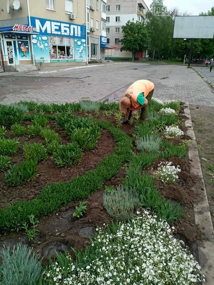 Які квіти прикрасять Новомосковськ влітку, навесні та восени: в місті облаштовують клумби , фото-1