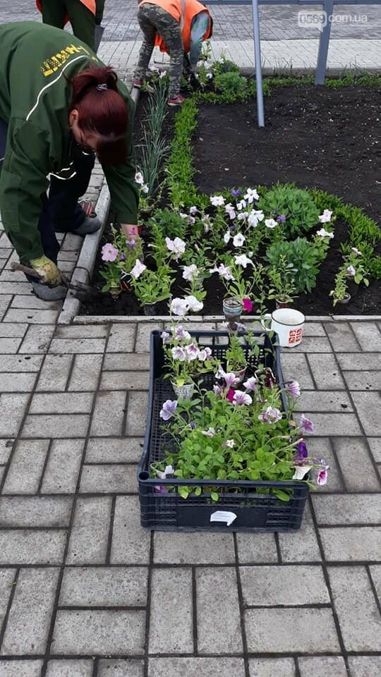 Які квіти прикрасять Новомосковськ влітку, навесні та восени: в місті облаштовують клумби , фото-4