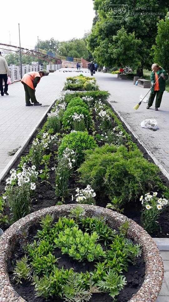 «Новомосковськ квітучий» - такий ФЛЕШМОБ запустили у місті, фото-2