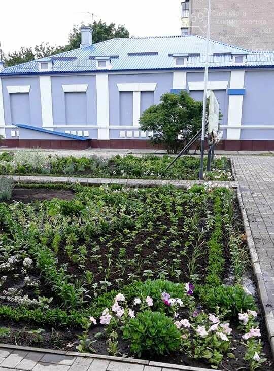 «Новомосковськ квітучий» - такий ФЛЕШМОБ запустили у місті, фото-1