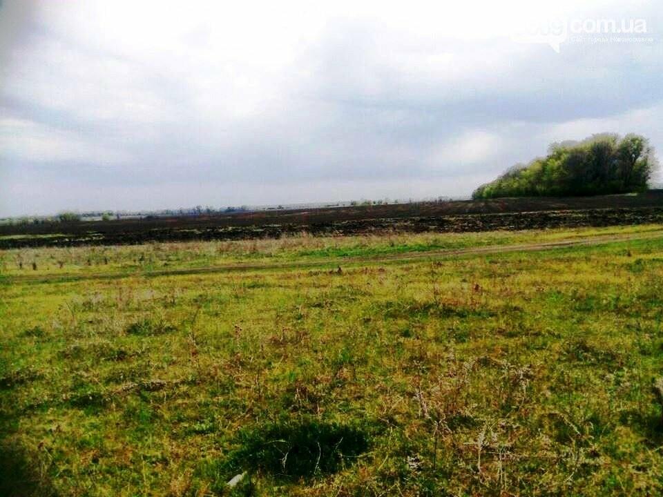 На Новомосковщині протидіяти незаконному захопленню земель буде спеціальна комісія, фото-1