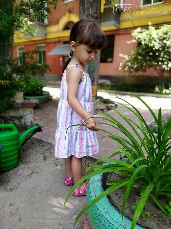 Дитячий майданчик одного з дворів центру Новомосковська опинився під загрозою, або: дворовий тероризм, фото-10