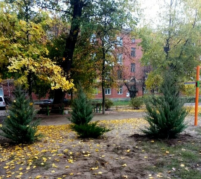 Дитячий майданчик одного з дворів центру Новомосковська опинився під загрозою, або: дворовий тероризм, фото-5