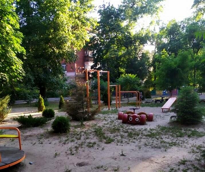 Дитячий майданчик одного з дворів центру Новомосковська опинився під загрозою, або: дворовий тероризм, фото-7