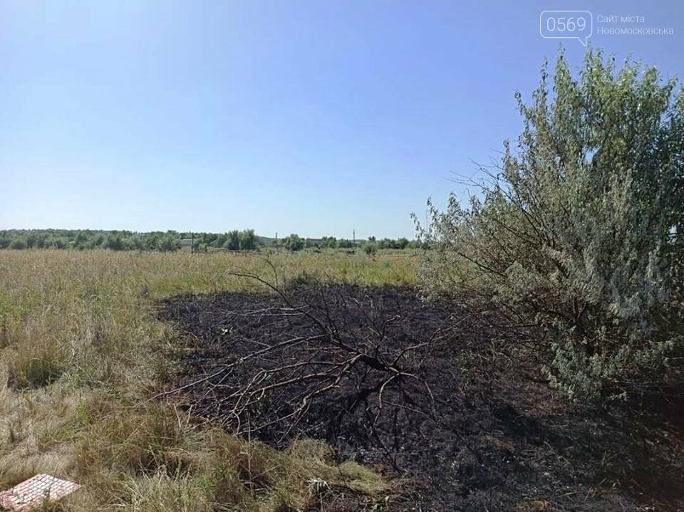 Біля села Спаське Новомосковського району чоловік напідпитку підпалив поле, фото-2