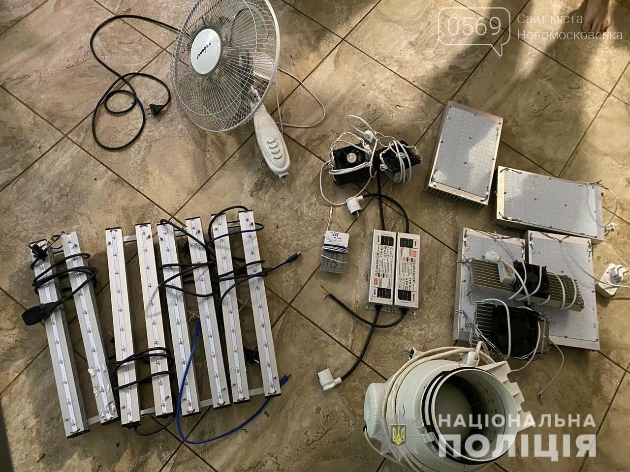 У Новомосковську поліцейські припинили злочинну діяльність наркоторговця, який вирощував та збував канабіс, фото-1