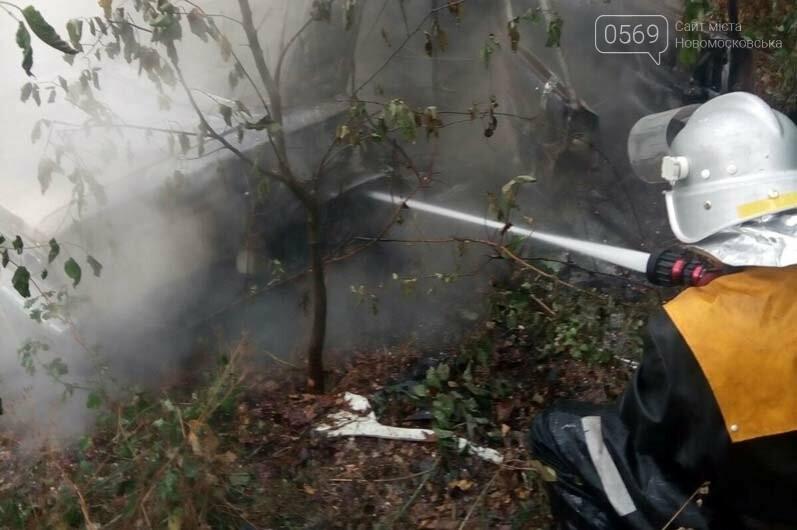 В селі Орлівщина Новомосковського району загорілася автівка, фото-2