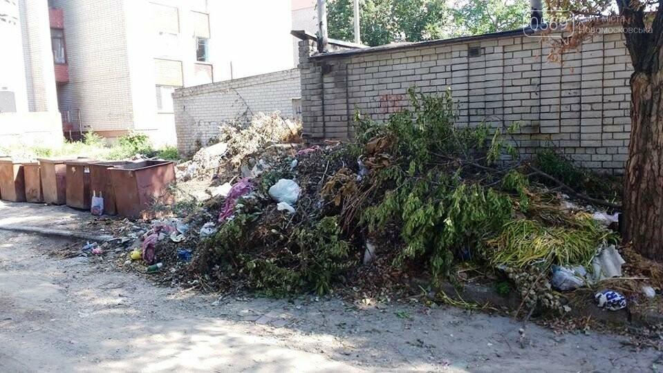 Замість одного майданчика для ТПВ – декілька: або поневіряння сміттєвих баків у центрі Новомосковська, фото-6