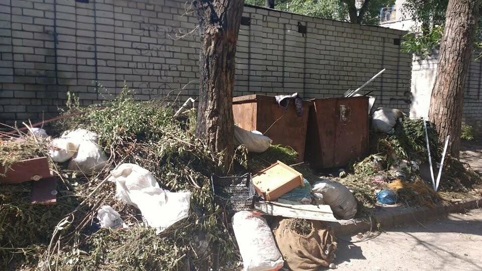 Замість одного майданчика для ТПВ – декілька: або поневіряння сміттєвих баків у центрі Новомосковська, фото-5