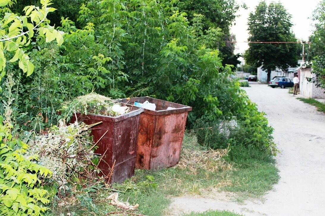 Замість одного майданчика для ТПВ – декілька: або поневіряння сміттєвих баків у центрі Новомосковська, фото-7