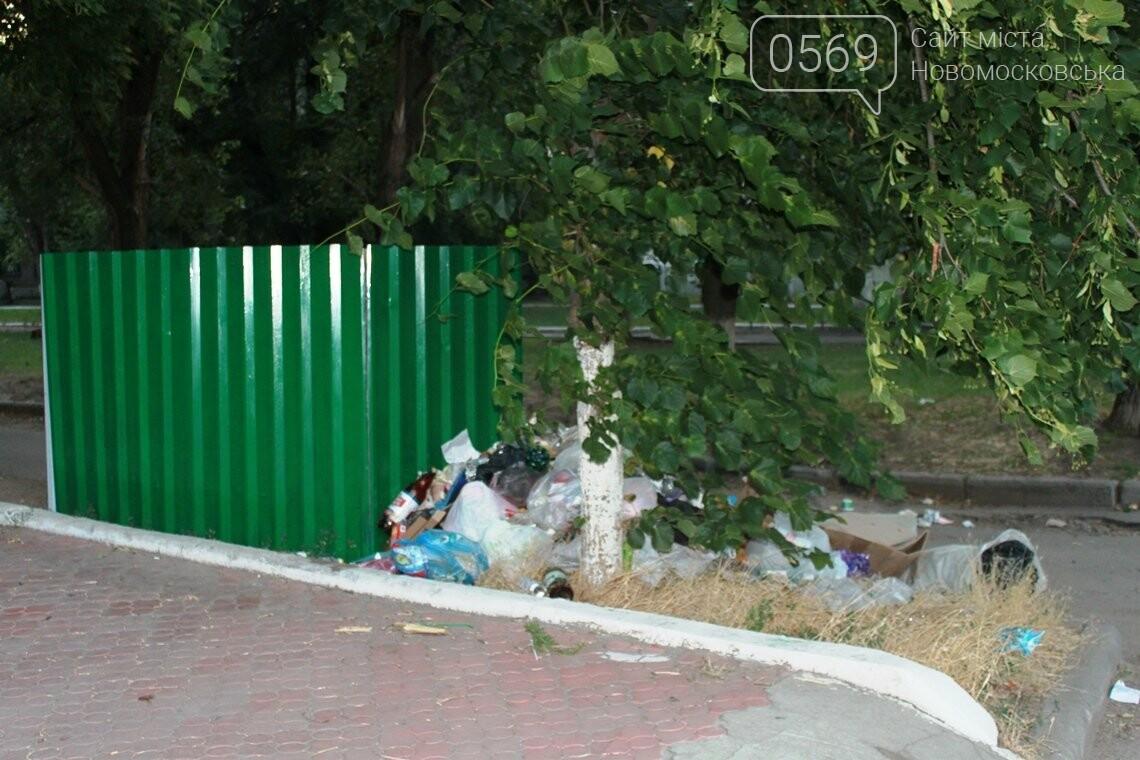 Замість одного майданчика для ТПВ – декілька: або поневіряння сміттєвих баків у центрі Новомосковська, фото-1
