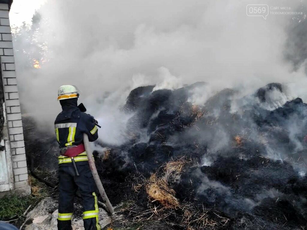 На подвір'ї одного з домогосподарств Новомосковська згоріло 2 тонни сіна, фото-2