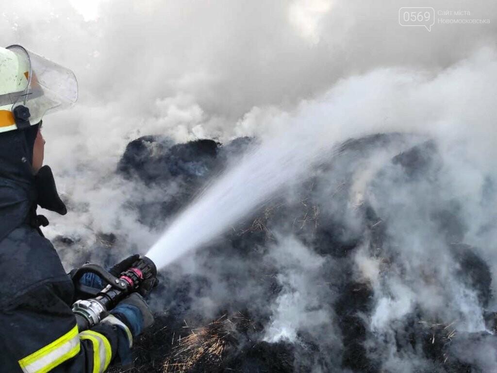 На подвір'ї одного з домогосподарств Новомосковська згоріло 2 тонни сіна, фото-3