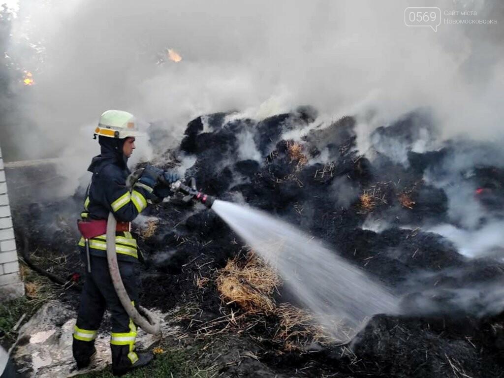 На подвір'ї одного з домогосподарств Новомосковська згоріло 2 тонни сіна, фото-1