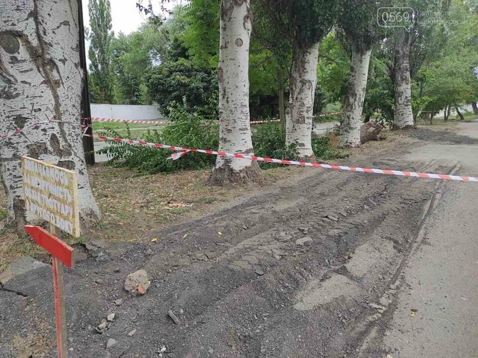На одній з вулиць Новомосковська з'явиться новий тротуар, фото-3