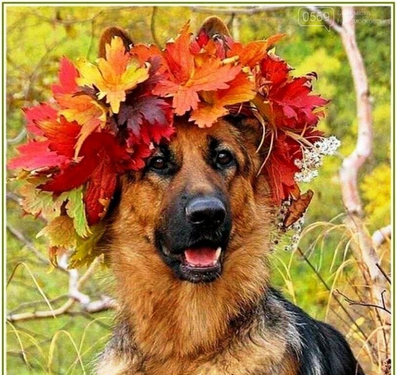 9-го вересня відзначають Міжнародний день краси, фото-1