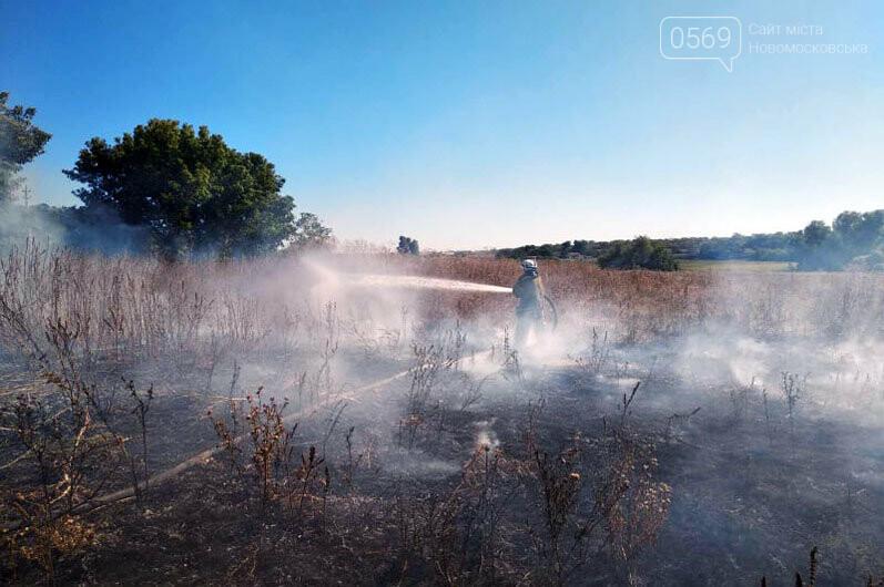 Надзвичайники Дніпропетровщини звертаються до свідомості громадян: кількість пожеж в екосистемах невпинно зростає (ФОТО, ВІДЕО), фото-4