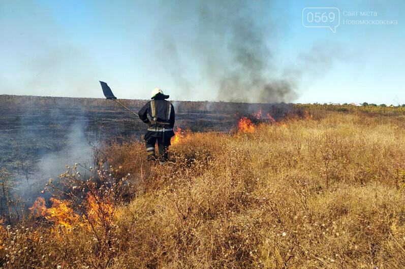 Надзвичайники Дніпропетровщини звертаються до свідомості громадян: кількість пожеж в екосистемах невпинно зростає (ФОТО, ВІДЕО), фото-5