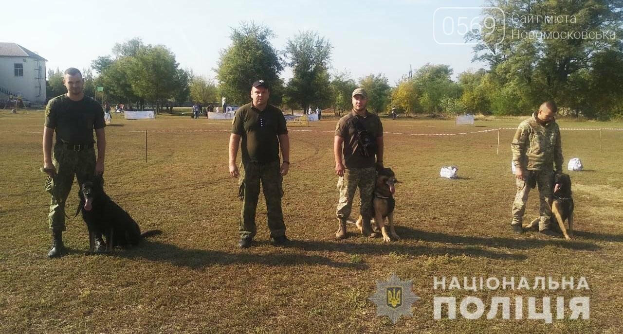 У Новомосковську поліцейські кінологи та їх вихованці взяли участь у показових виступах службових та охоронних собак, фото-1