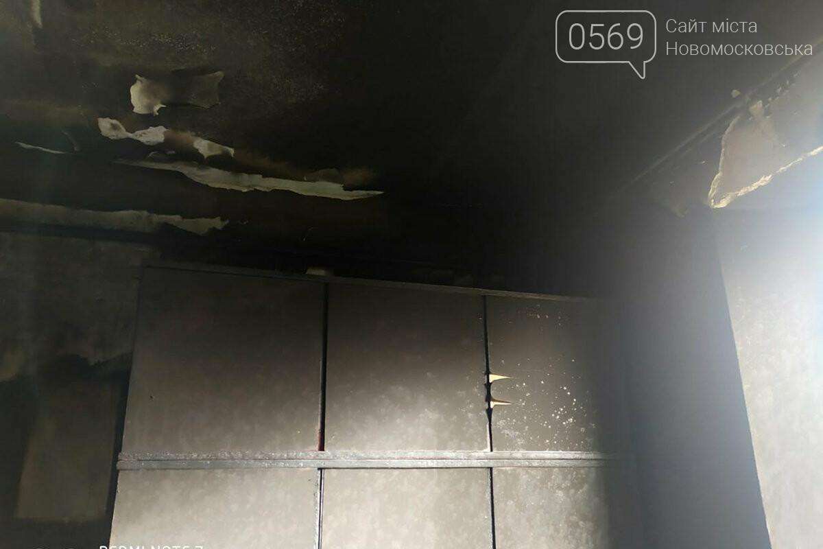У селі Миролюбівка Новомосковського району на пожежі загинув 83-річний чоловік, фото-1