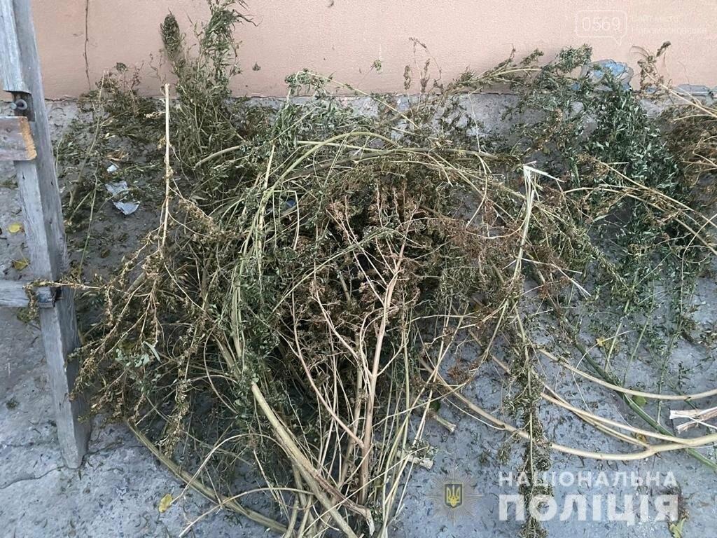 У Новомосковську під час обшуку поліцейські вилучили наркотики та зброю, фото-3