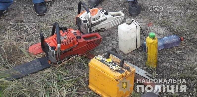 На Новомосковщині зловмисники пиляли дуби в лісовому масиві, фото-2