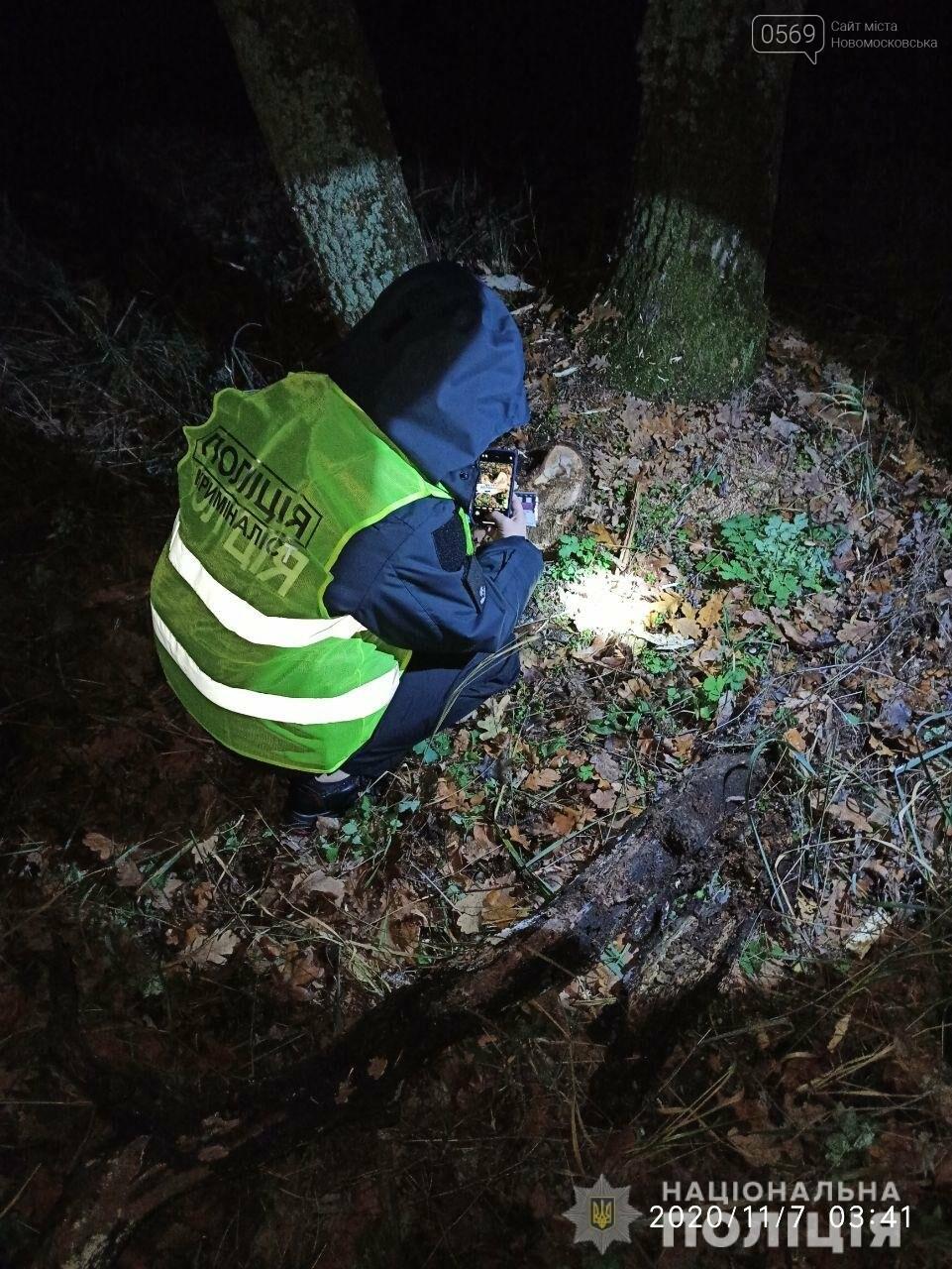 На Новомосковщині зловмисники пиляли дуби в лісовому масиві, фото-1