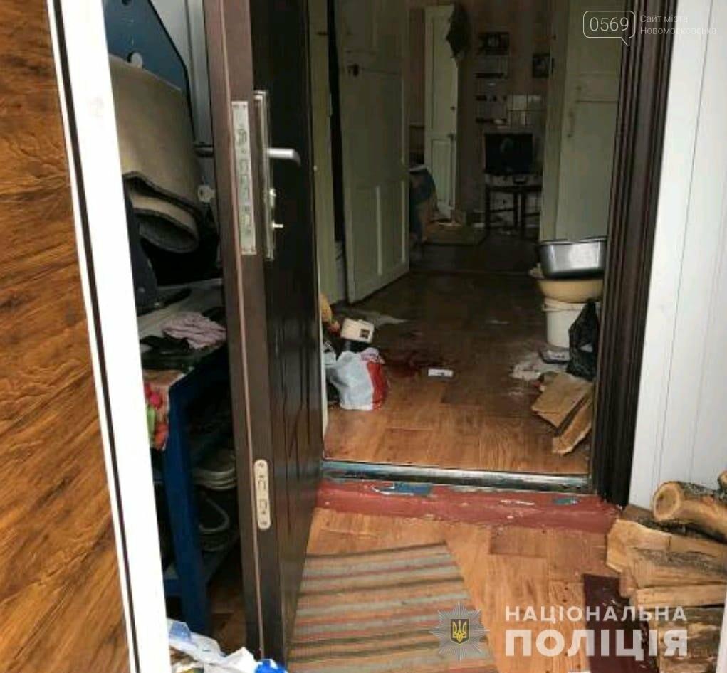 У Новомосковському районі поліцейські затримали чоловіка, який скоїв розбійний напад на пенсіонерку , фото-1