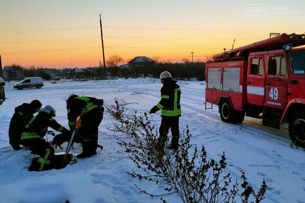 У Перещепине  Новомосковського району надзвичайники рятували собаку , фото-1
