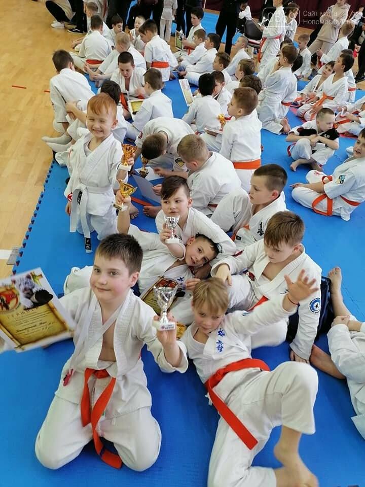 5 золотих медалей: вихованці клубу «Русичі» гідно представили Новомосковськ на міжклубному турнірі, фото-9