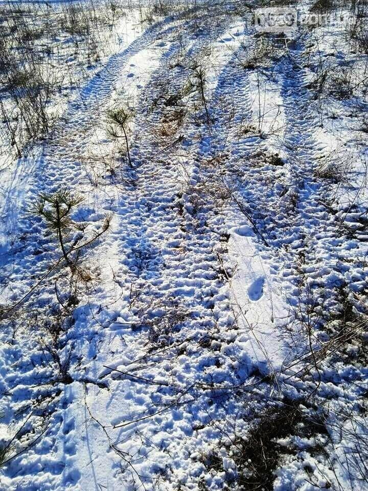 Мер Новомосковська пообіцяв розібратися з питанням прокату квадроциклів  в лісопарковій зоні міста, фото-4