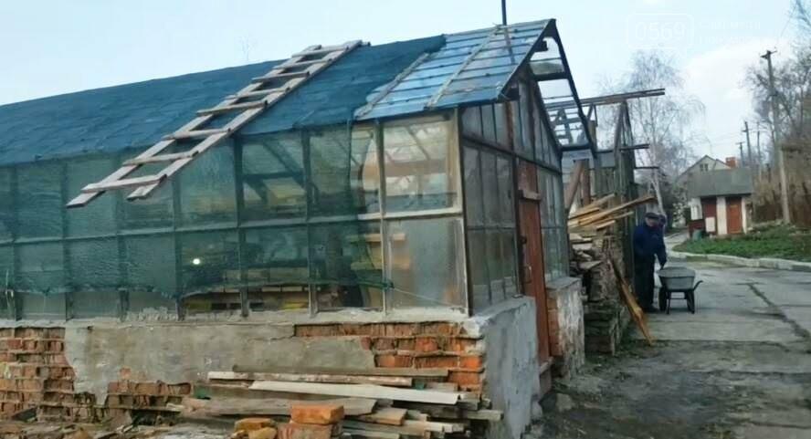 У Новомосковську продовжують відновлення роботи міської оранжереї, фото-1