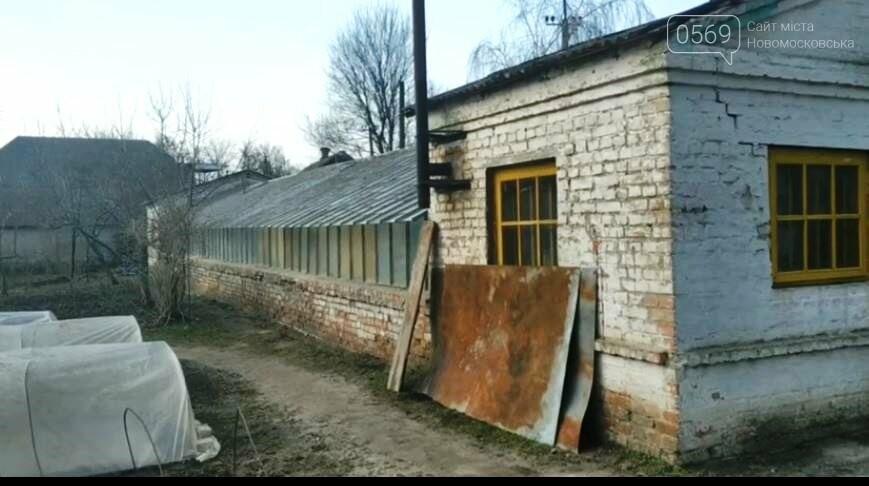 У Новомосковську продовжують відновлення роботи міської оранжереї, фото-9