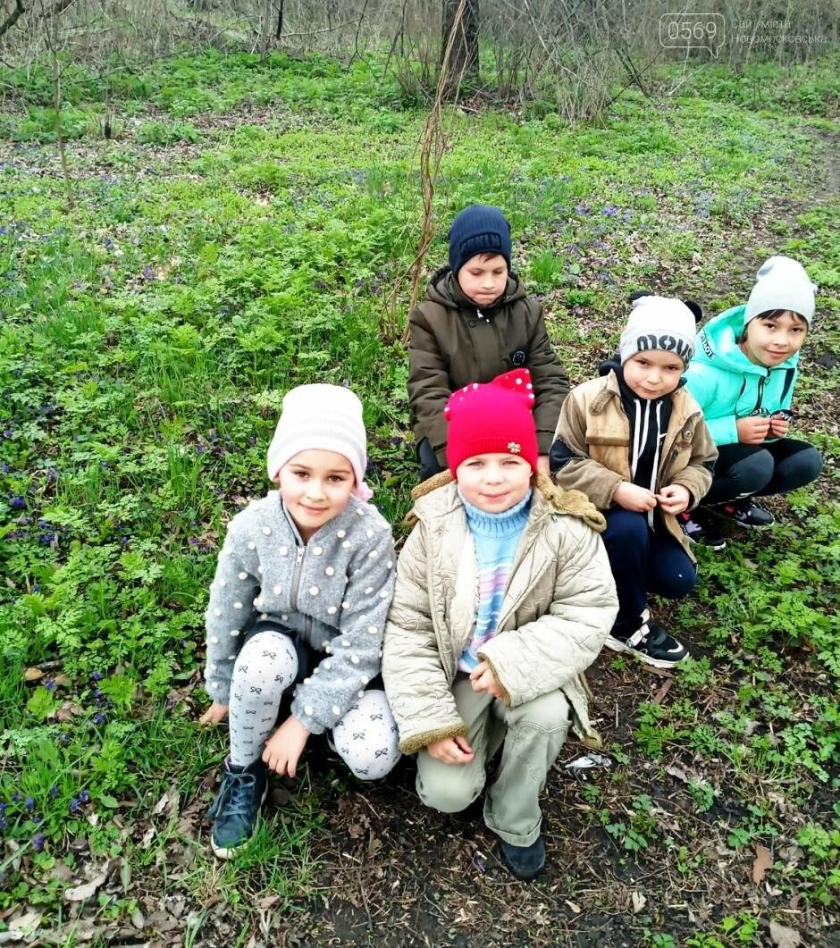 Учні школи, що в Андріївці Новомосковського району, навели лад біля свого навчального закладу , фото-4