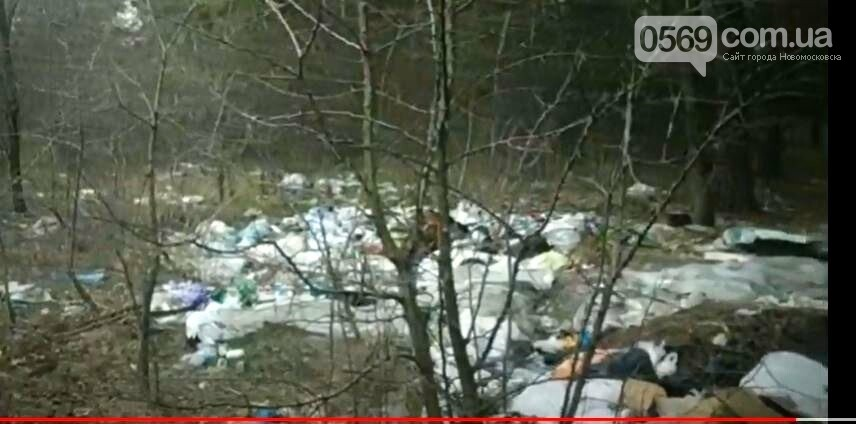 Перлина Новомосковщини – Орлівщина, курорт чи сміттєзвалище?: пропонуємо відео, фото-3