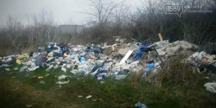 Перлина Новомосковщини – Орлівщина, курорт чи сміттєзвалище?: пропонуємо відео, фото-1