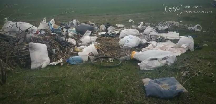 Перлина Новомосковщини – Орлівщина, курорт чи сміттєзвалище?: пропонуємо відео, фото-5