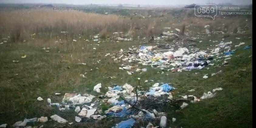 Перлина Новомосковщини – Орлівщина, курорт чи сміттєзвалище?: пропонуємо відео, фото-6