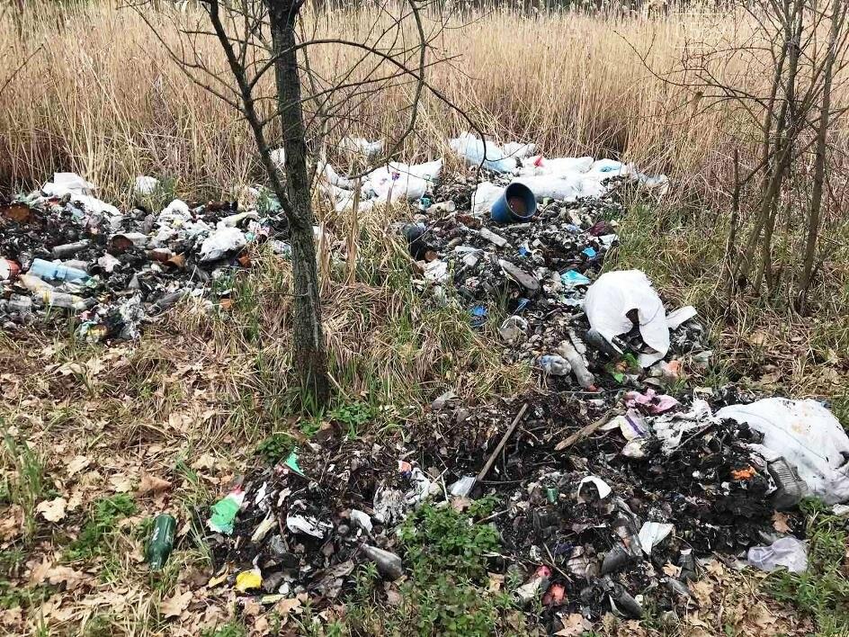 Більше 100 мішків сміття зібрали і вивезли волонтери з лісу, що поблизу Новомосковська, фото-4