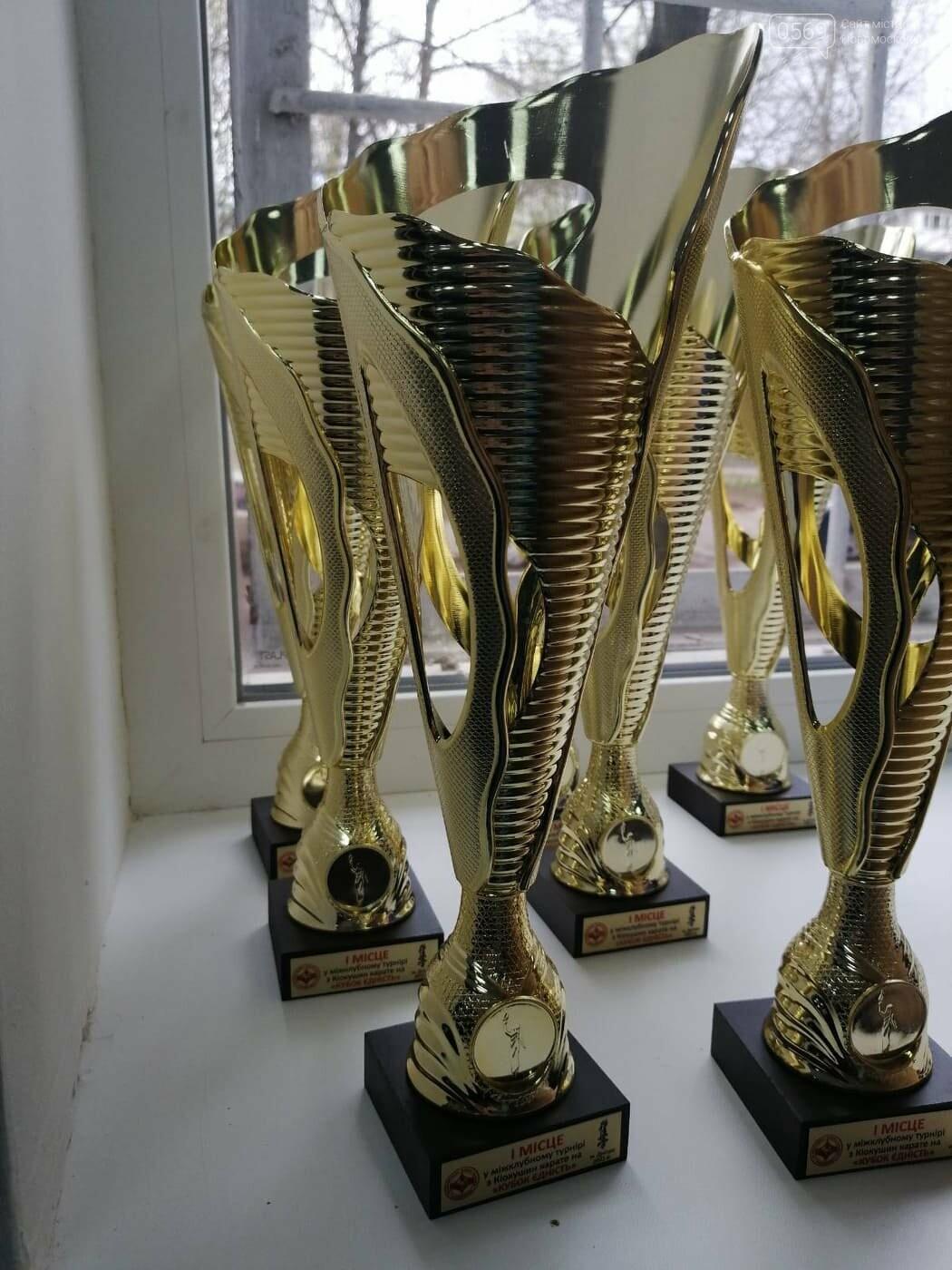 Здобувши перемогу в усіх боях, каратист СК «IRINA» з Новомосковщини взяв золото «Кубку Єдності», фото-2
